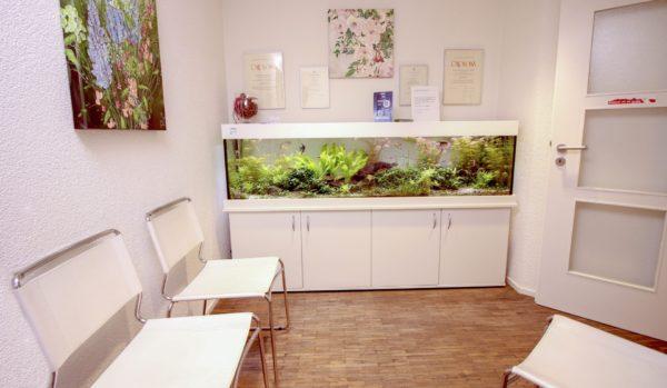 wartezimmer zahnart aquarium
